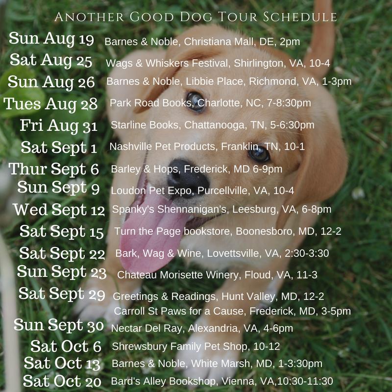 dart schedule 8-17