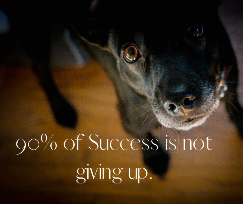 90% of Success is not giving up.